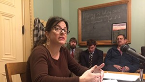 Freelance journalist Hilary Niles testifies in favor of a shield law in the Senate Government Operations Committee.
