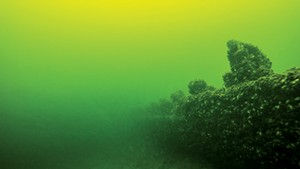 An underwater shipwreck in Lake Champlain