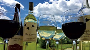 Lincoln Peak Vineyard Cultivates Vermont's Wine Industry