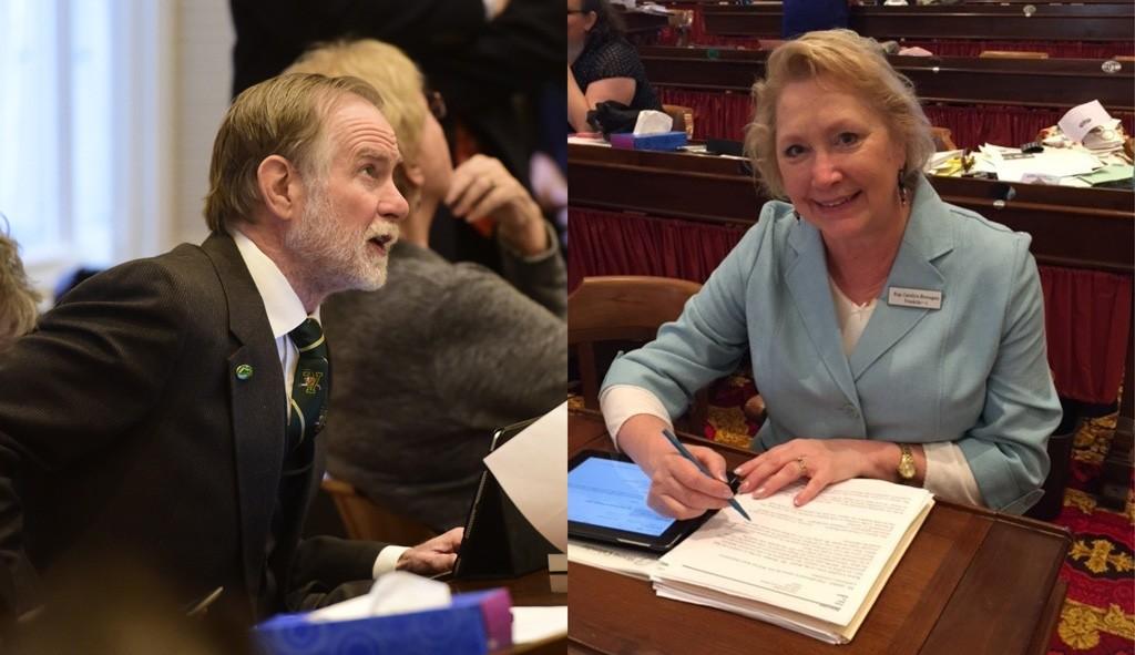 Rep. David Sharpe and Sen. Carolyn Branagan - FILE PHOTOS