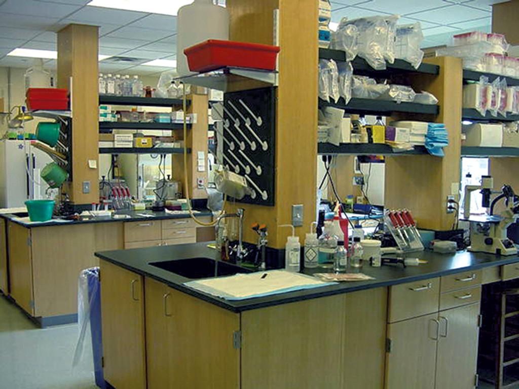 Lab facilities at the Trudeau Institute - COURTESY OF THE TRUDEAU INSTITUTE