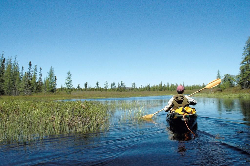 Phil Brown paddling Shingle Shanty Brook - COURTESY OF SUSAN BIBEAU