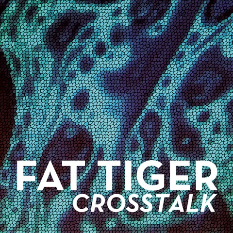 Fat Tiger, Crosstalk