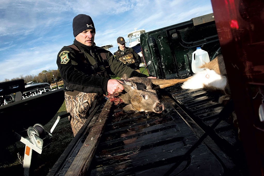 Dale Whitlock with a poached deer that will be used as evidence - CALEB KENNA