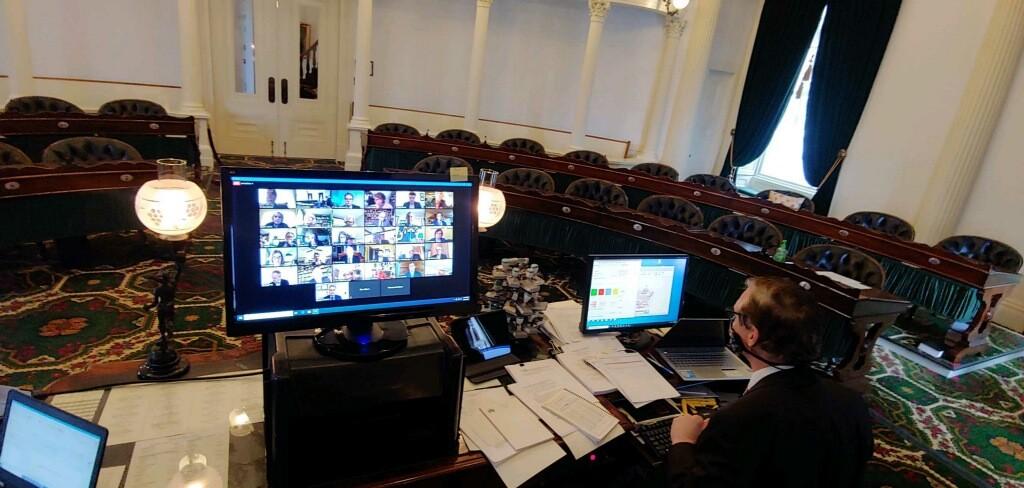 The Senate chamber during remote voting Friday. - COURTESY OF DAVID ZUCKERMAN