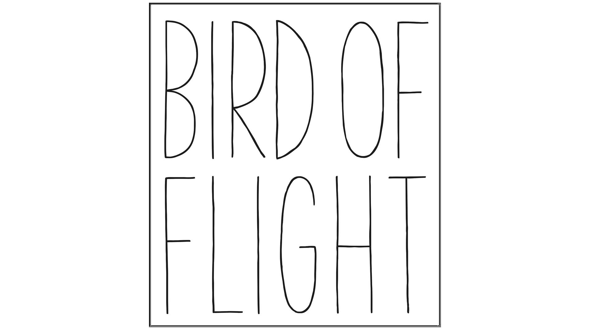 Bird of Flight Shoes