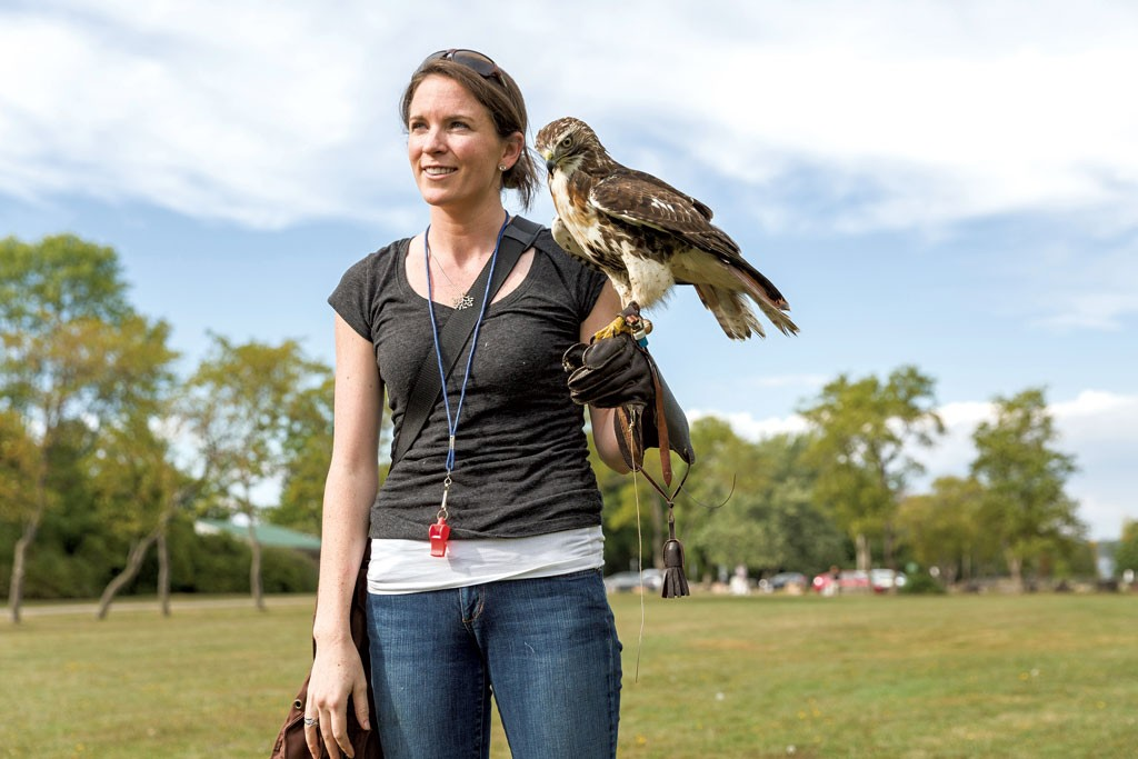 Talon Scouting With A Vermont Falconer Outdoors Recreation Seven Days Vermont S Independent Voice