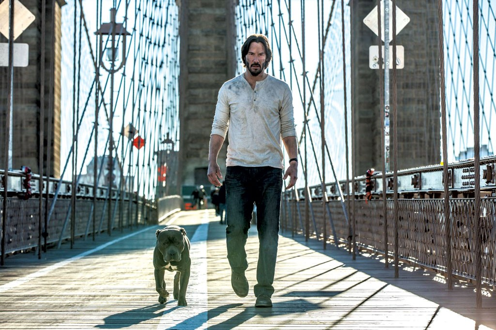 Movie Review Art Gets As Much Time As Action In John Wick Chapter