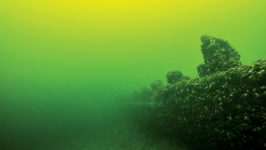 An underwater shipwreck in Lake Champlain - PHOTOS COURTESY OF LAKE CHAMPLAIN MARITIME MUSEUM