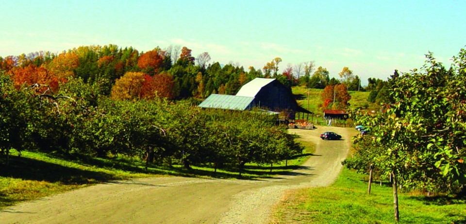 Verger Heath Orchards, Stanstead, Québec - COURTESY OF EDEN SPECIALTY CIDERS