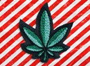 Holiday Stash: A Cannabis Gift Guide