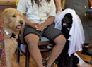 A Dog Wedding Brings Joy to a Burlington Assisted Living Home