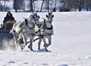 Sleigh Day: Snowfall Brings Sleigh Rides at Shelburne Farms