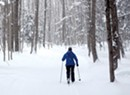 Snow Go: Short Winters, Warm Temperatures Bedevil Vermont's Nordic Ski Areas