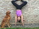 Stretch & Sip Yoga