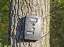 WTF: Why Are Game Cameras So Popular?