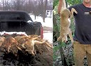 Wily Coyote Activists Use Facebook Images of Hunters for Their Cause