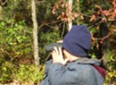 Bird Monitoring Walk
