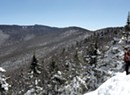 Carbon Cents: Vermont Considers How to Make Cash by Letting Forests Grow