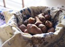 Farmers Market Kitchen: Glazed Sunchokes With Calendula