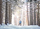 Ripton's Rikert Nordic Center Welcomes Wintertime Athletes