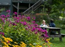 Scenic Spots for Dining Outdoors in Vermont This Summer