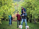 Top Picks: Seven PYO Apple Orchards Worth the Drive