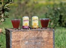 Local Shrubs, Sodas and Switchels for End-of-Summer Sipping