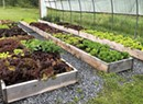Vermont Leads National Farm-to-School Movement, and Harwood Union High School Demonstrates How