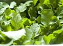 Farmers Market Kitchen: Radish Greens Frittata