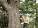 Arborist Warren Spinner, an Urban Forest Hero