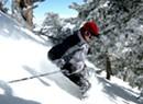 Montpeculiar: Scott Declares 'Powder Day' — For Non-Vermonters
