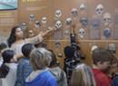 Exploring Human Origins [SIV481]