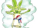 Marijuana Legalization Bill Is Still Alive, But Lacks Strong Support