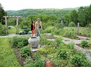 Lincoln-Based Studio Roji Creates Gardens as Refuge