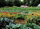 Eat This Week, August 16 to 22, 2017: No Farms, No Food