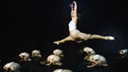 Dance Showcase: 'Embracing Inclusion Through Movement'
