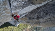 Movie Review: 'Free Solo' Offers a Fascinating Look Inside a Mountain Climber's Brain