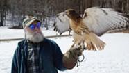 Stuck in Vermont: Wild Ambassador Raptors Educate Visitors at Shelburne Farms