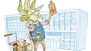 The Cannabis Catch-Up: Is Your CBD the Real Deal?