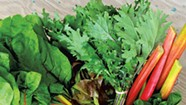 Pete's Greens to Offer Brooklyn CSA