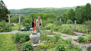 Lincoln-Based Studio Roji Creates Gardens as Refuge