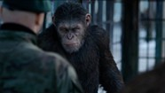 Movie Review: 'War for the Planet of the Apes' Remains Sneakily Subversive Franchise Fare