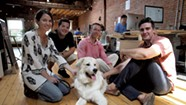 A Burlington Marketing Company Goes to the Dogs