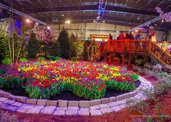 Slideshow: The Vermont Flower Show 2019