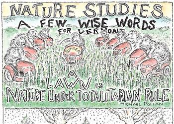 Nature Studies: Seasonal Sayings for Vermont