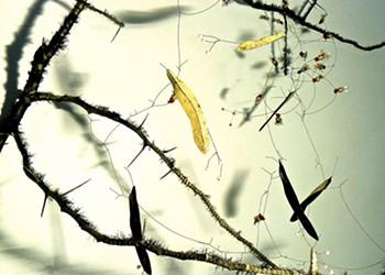 Art Review: Brenda Garand, White River Gallery at BALE