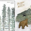 Four New Albums From Formerly Local Artists