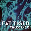 Album Review: Fat Tiger, 'Crosstalk'