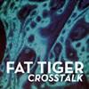 Album Review: Fat Tiger, 'Crosstalk'